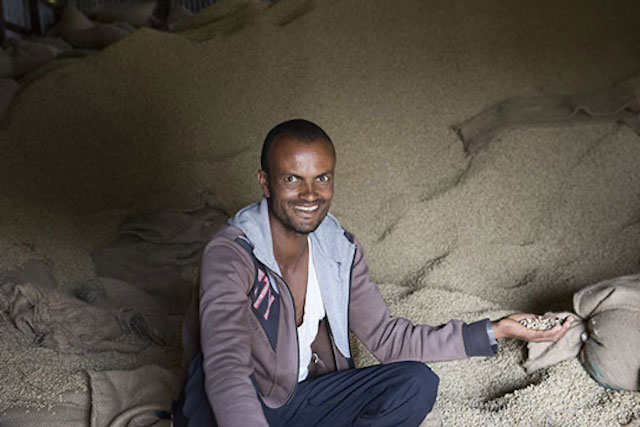 Ethiopian coffee farmer