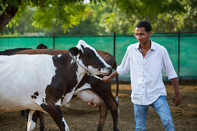 Gaurav Shirsaths Dairy Farm Serves As A Demonstration Unit For Other Farmers In His Community He Also Started Milk Collection Facility To Support Higher