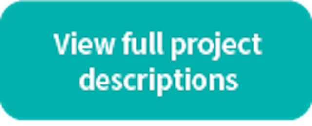 View full project descriptions button