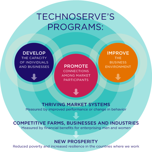 TechnoServe Theory of Change and Cycle of Development