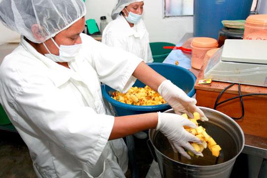 Prepares pinapples in Guatamala's Mayan highlands