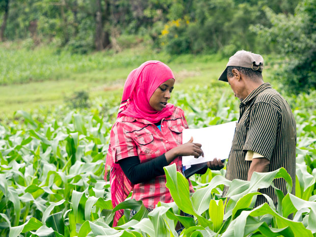 TechnoServe working with young women entrepreneur for coffee farming in Ethiopia